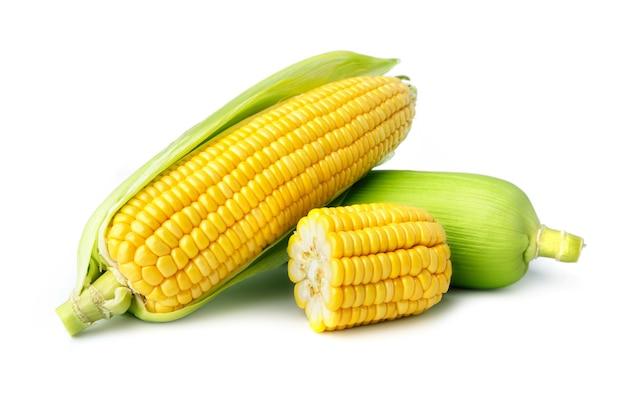 白い背景の上の新鮮なトウモロコシ分離株