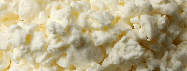 전체 배경에 신선한 코티지 치즈를 닫습니다.