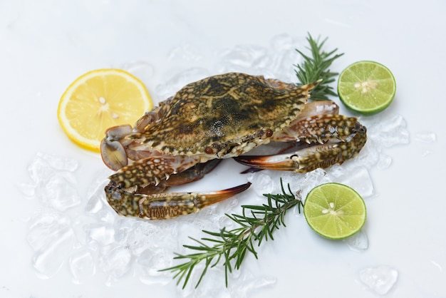Fresh crab on ice with citrus slices and rosemary
