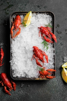 검은 접시 배경에 신선한 가재 음식입니다. 레스토랑 미식 건강식에서 허브 향신료 레몬 로즈마리와 얼음을 곁들인 붉은 가재 스낵 해산물