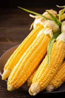 Fresh crop of corn, organic corn cob with leaves on dark wooden background