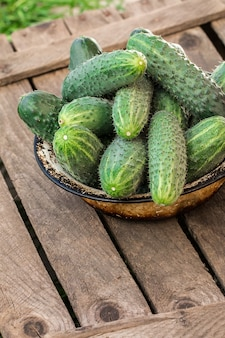 Fresh cucumbers on a wooden table