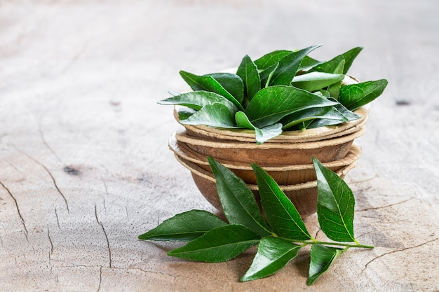 Fresh curry leaves in coconut bowl on wood
