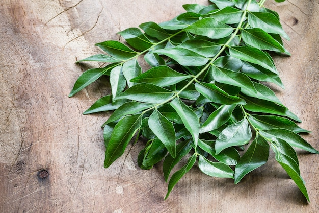 Fresh curry leaves on wood