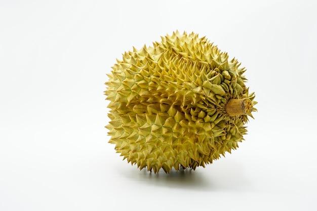 Fresh cut mon thong durian on white background
