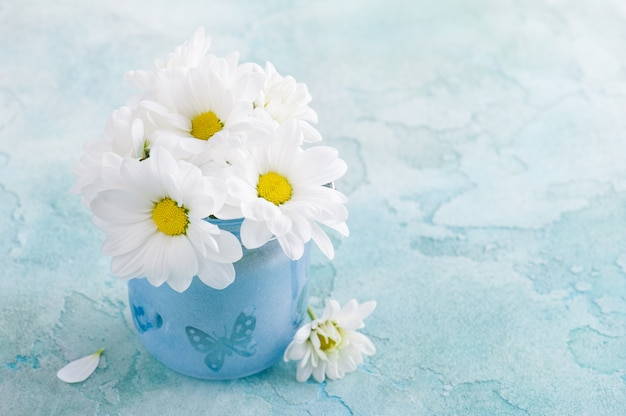 Fresh daisy flowers in blue glass