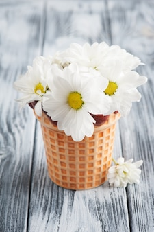Fresh daisy flowers in pot on shabby wooden table