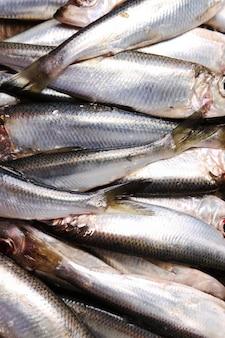 Fresh delicious fish