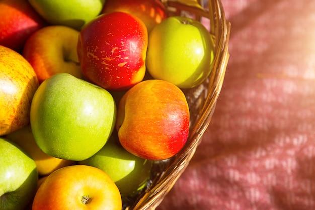 バスケットに入った新鮮でおいしい天然リンゴのさまざまな品種をクローズアップ-黄色、緑、赤。秋、収穫祭、秋の気分。ビタミン、環境への配慮。秋の背景