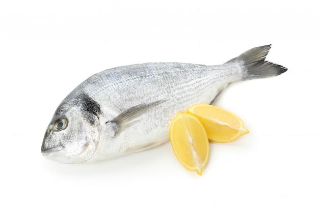 Свежая рыба дорадо и ломтики лимона, изолированные на белом