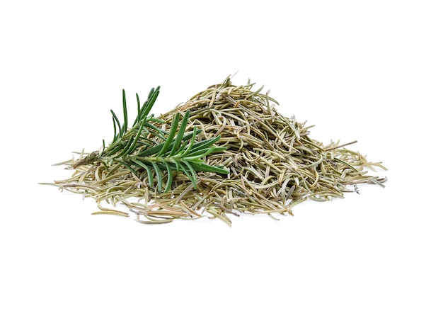 Fresh and dried rosemary isolated on white