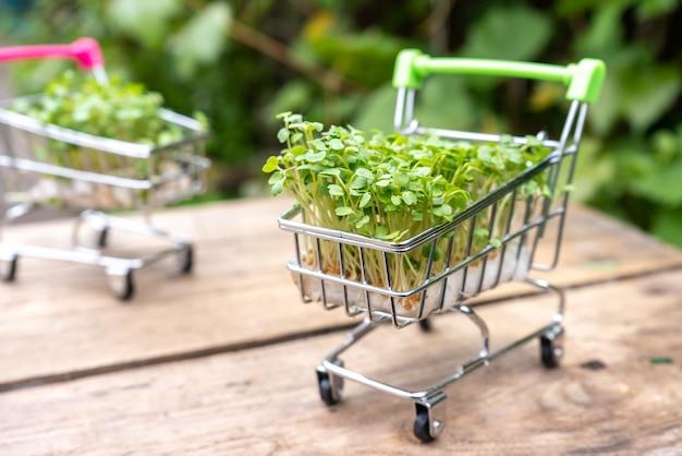 Концепция доставки свежей эко-зелени
