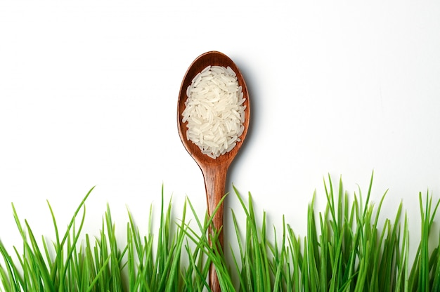 Fresh ecological rice concept on isolated space