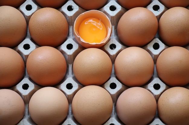 未調理の新鮮な卵黄が卵トレイで壊れている