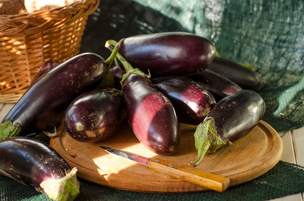 バスケットに入った新鮮なナス、新しい作物がクローズアップ
