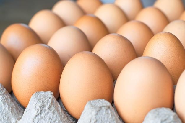 コンテナー上の新鮮な卵