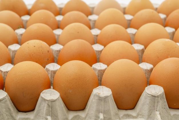 Fresh eggs in package .