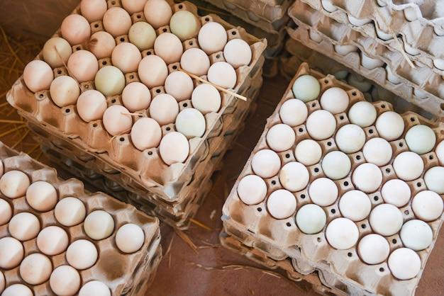 Fresh eggs in white duck egg box