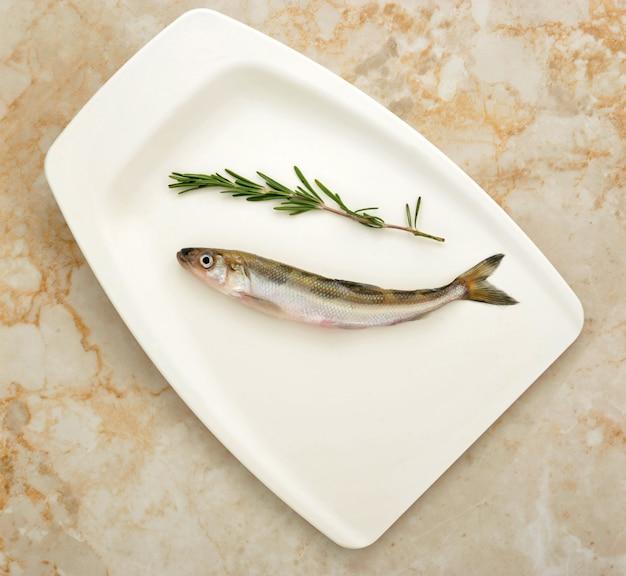 Fresh european smelt fish