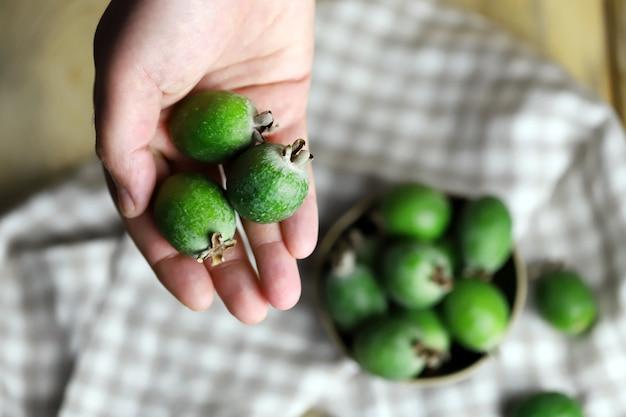 手に新鮮なフェイジョアフルーツ