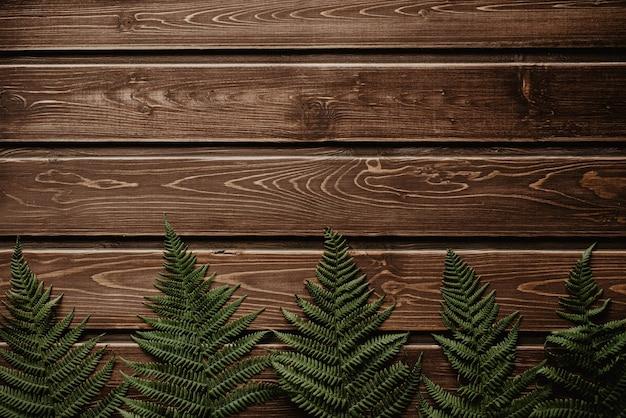 빈티지 나무 표면 복사 공간에 신선한 고 사리 테두리.
