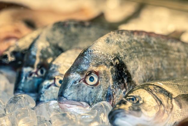 Свежая рыба на льду на рынке, греция
