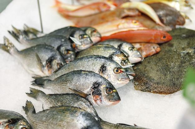 슈퍼마켓의 얼음 카운터에 모듬된 신선한 생선
