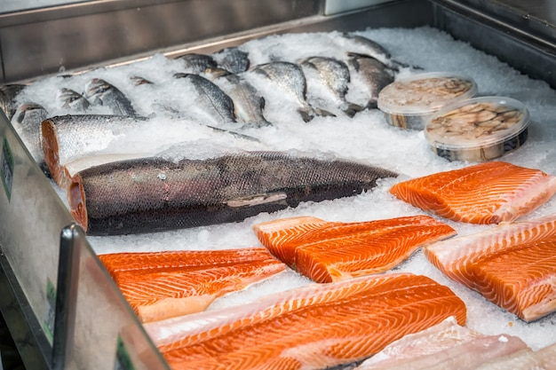 市場で新鮮な魚