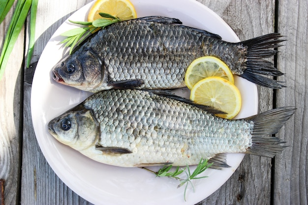Fresh fish carp on a plate and on the grass with lemon circles