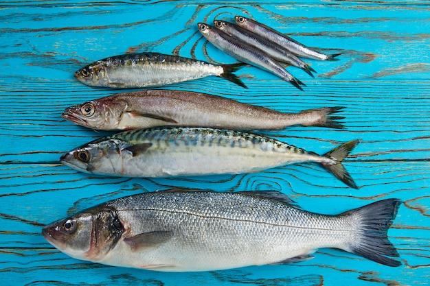 Fresh fish hake seabass sardine mackerel anchovies