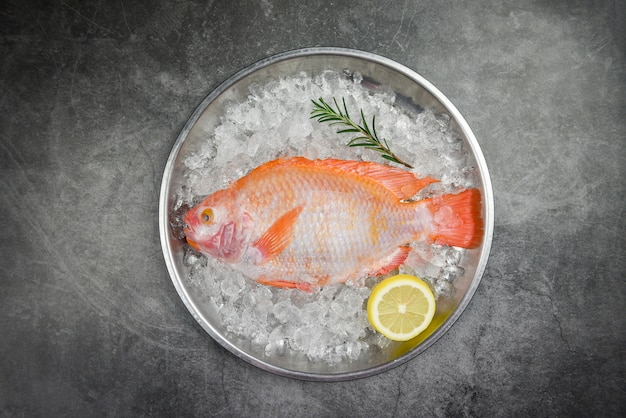 Fresh fish on ice with herbs spices rosemary and lemon / raw fish red tilapia on black background