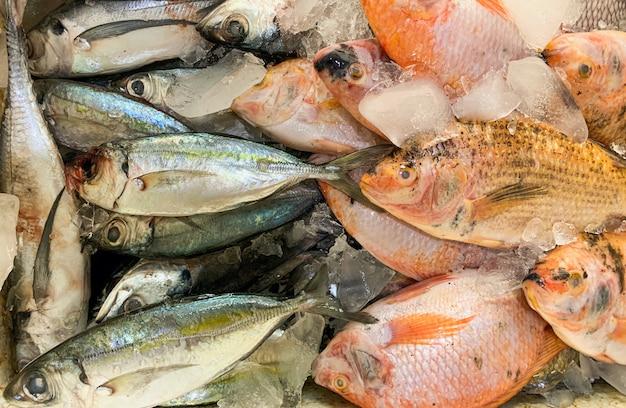 Свежая рыба в ледяной коробке