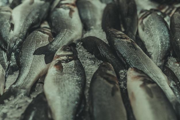 市場の新鮮な魚、クローズアップ
