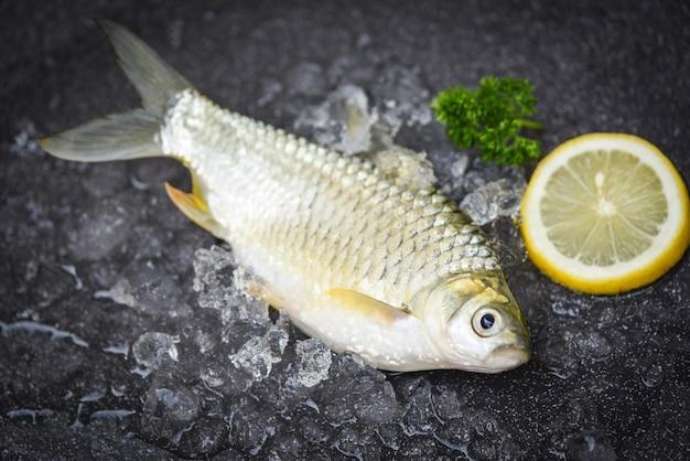 신선한 생선 레몬 평면도, 얼음에 실버 바브 물고기, 시장 음식에 자바 바브 잉어 물고기