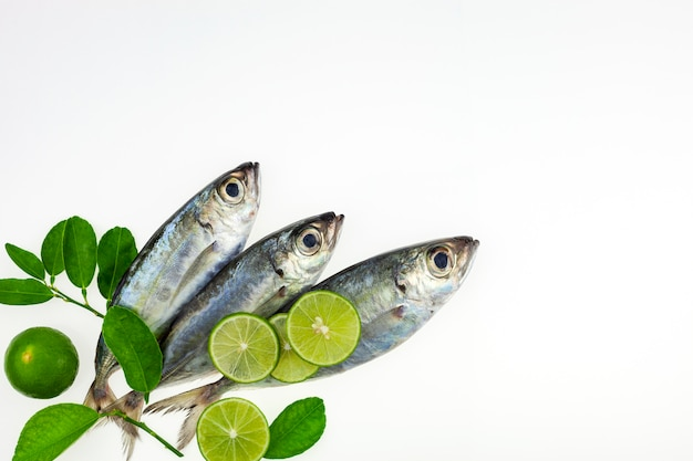 Fresh fish and lime isolated