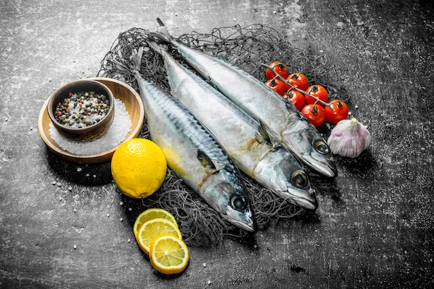 Fresh fish mackerel on a fishing net with tomatoes, garlic, lemon and spices. on dark rustic table