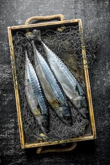 그물 낚시와 상자에 신선한 생선 고등어입니다. 어두운 시골 풍 테이블에