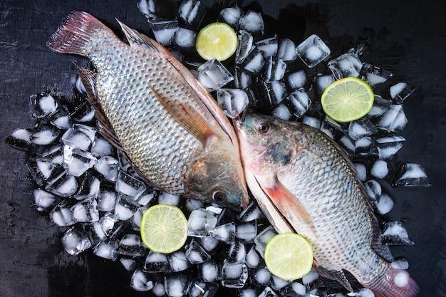 ティラピアの新鮮な魚、氷の上にレモンペースト。
