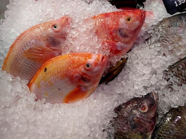 Свежая рыба на льду на рынке