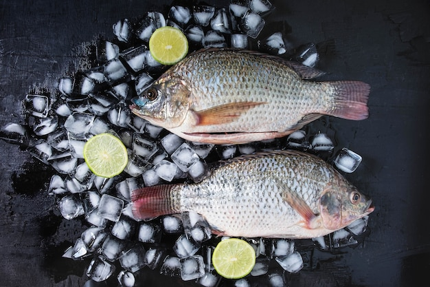Fresh fish of tilapia on ice with lemon paste.