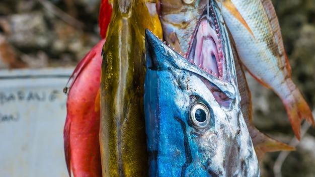 インドネシア、西パプア、ラジャアンパットのパイネモ島で購入する新鮮な魚。