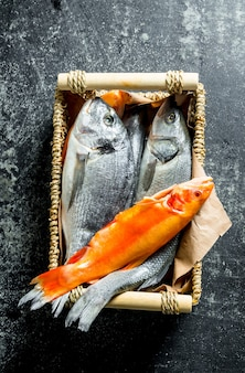Fresh fish in tray on dark rustic table