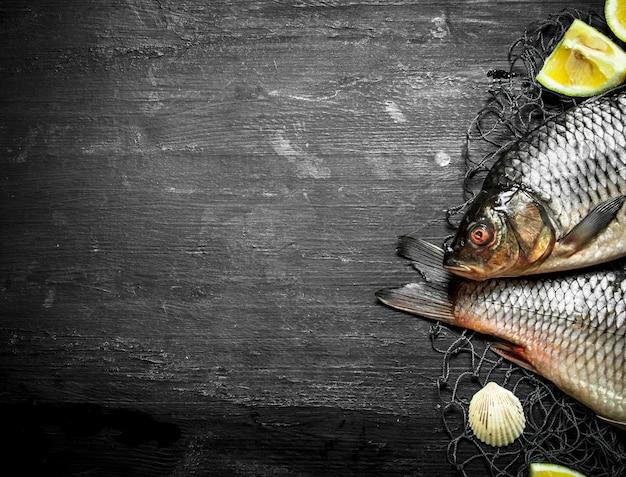 漁網にレモンと新鮮な魚。