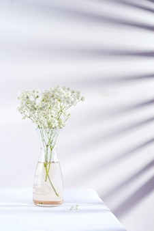 Fresh flower twigs of gypsophila plant in glass vase on table covered textile cloth against wall with shadows from jalousie.