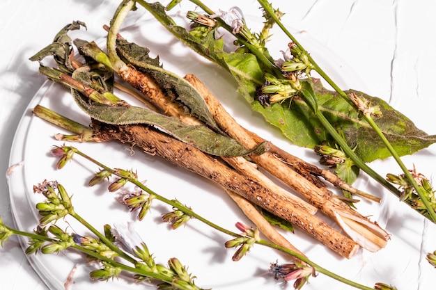 セラミックスタンドに生花とチコリの根。カフェインフリードリンクの天然成分。白い漆喰の背景、クローズアップ