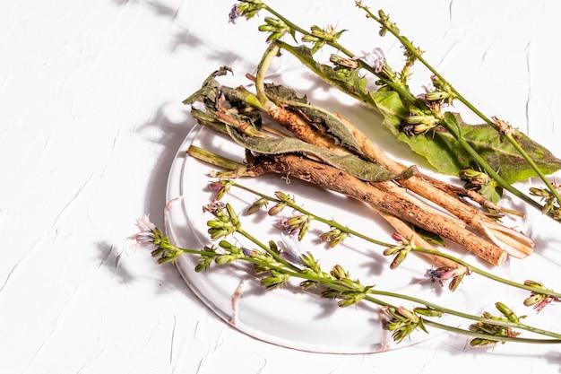 セラミックスタンドに生花とチコリの根。カフェインフリードリンクの天然成分。白い漆喰の背景、コピースペース