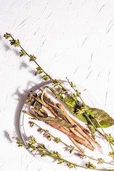 セラミックスタンドに生花とチコリの根。カフェインフリードリンクの天然成分。白い漆喰の背景、上面図