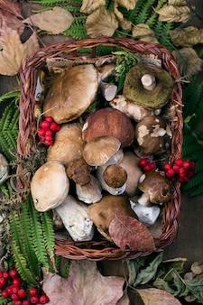 단풍 표면에 신선한 숲 버섯 boletus
