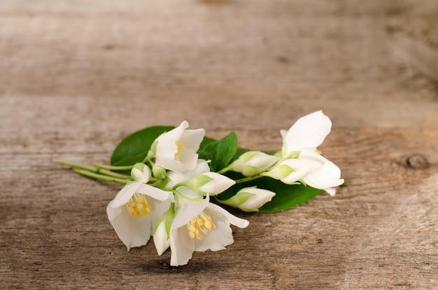 오래 된 나무 테이블에 누워 자스민의 신선한 향기로운 흰색 꽃.