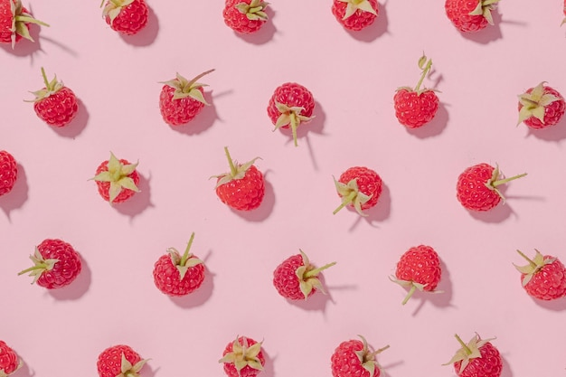 Fresh fruit background with ripe red raspberries arranged in a random pattern on pink paper in a flat lay still life